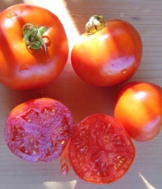Seminte de rosii soiul Druzba