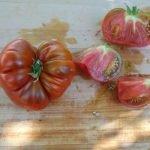 Seminte de rosii soiul Arbuznyi