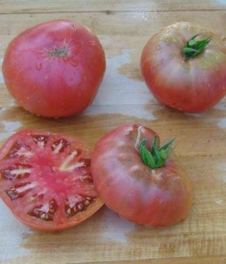 Seminte de rosii soiulDwarf Wild Spudleaf