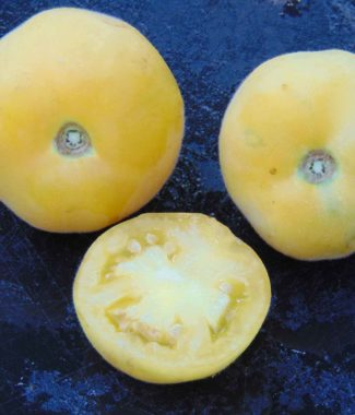 Wapsipinicon Peach 4